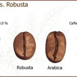 International Coffee Day, Inilah Perbedaan Kopi Arabika dan Robusta